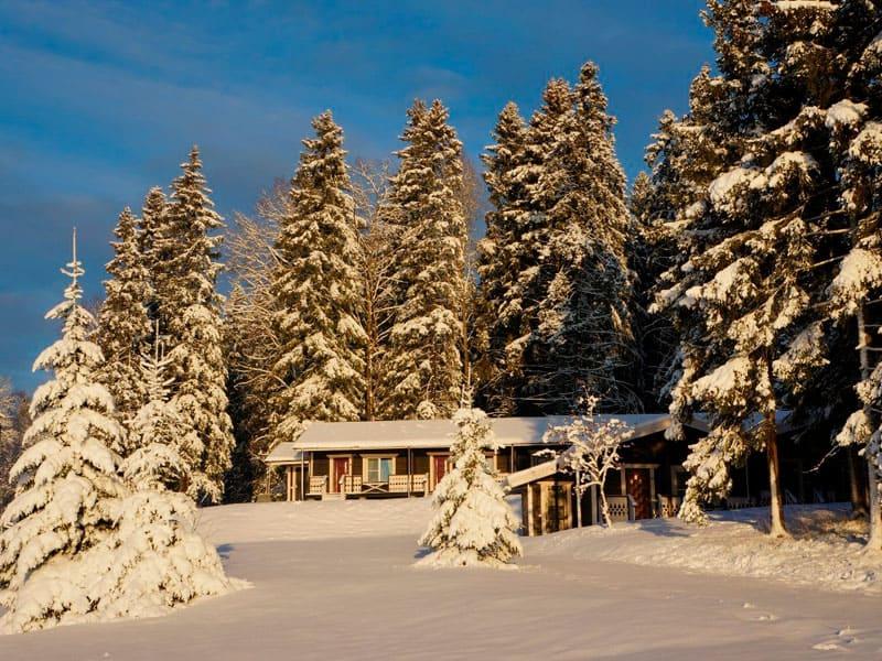 отель «Времена Года» зимой