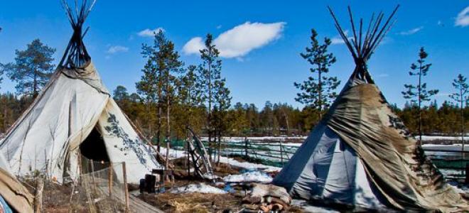 """Посещение саамской деревни, фото-локации """"Арктика"""" и подворья домашних животных"""